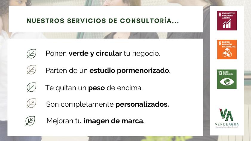 Infografia Servicios de Consultoría y Asesoría Empresarial de Verde Agua