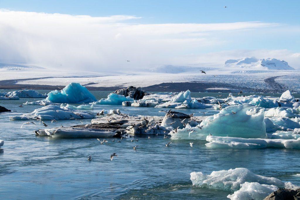 Cambio Climatico Efectos
