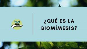 biomimesis